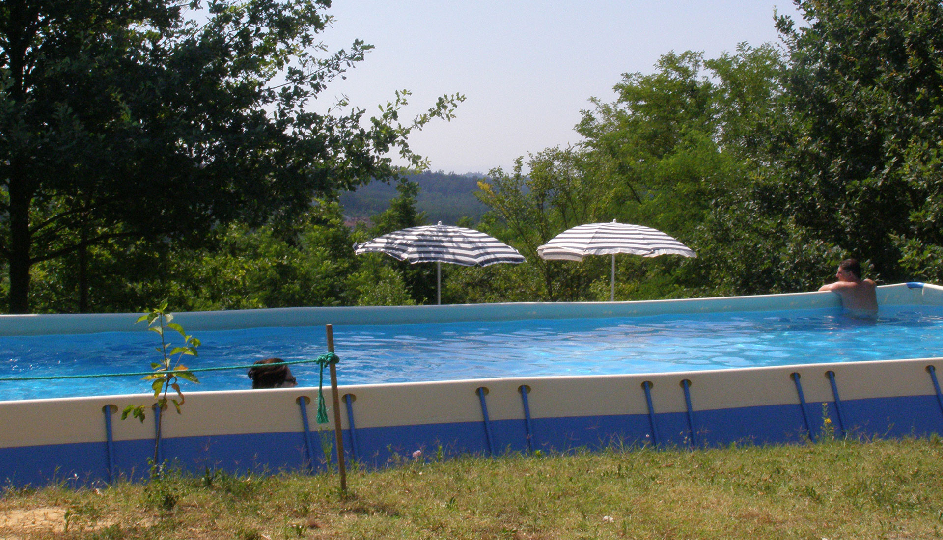 Cool off with a swim in the pool … surrounded by nature